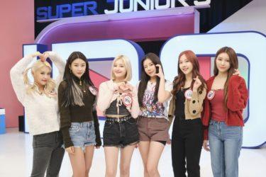 KNTV 初のガールズゲストMOMOLAND『SUPER JUNIORのアイドルVSアイドル』